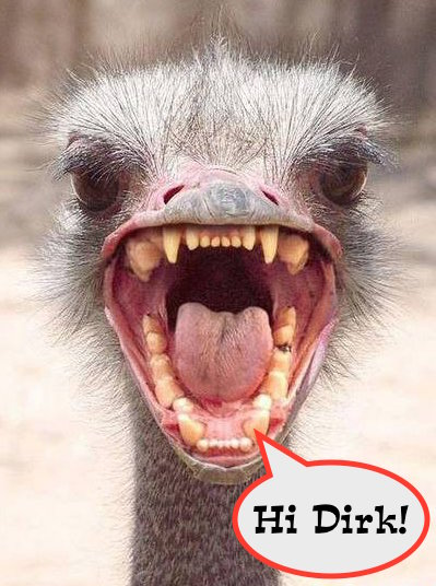 angry_ostrich.jpg
