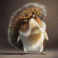 Squirrelcop
