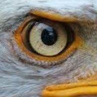 eagleseye