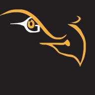 Eagle Eye Drone Svc