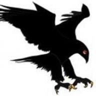 Blackhawk50