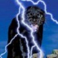Panther6834