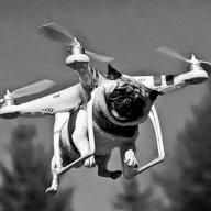 DroneDog