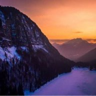 Alpinekiwi