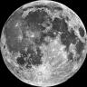 Moonfox