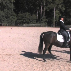 Spring Island Equestriennes - YouTube