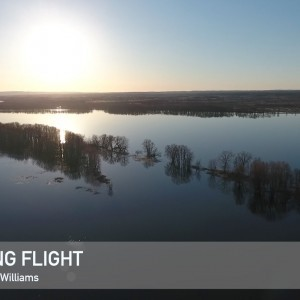 Phantom 4, Evening Flight - YouTube