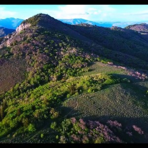 Snowbasin area Sardine Peak Drone - YouTube
