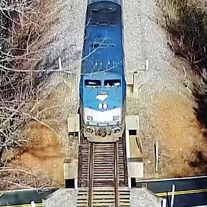 Amtrak #80 Carolinian Across the Overpass & Through the Woods - Burlington to Durham, NC